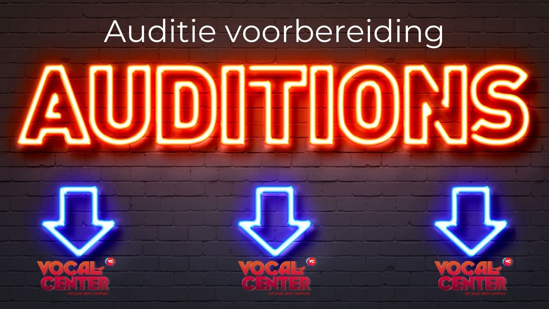 Auditeren kun je leren. Auditie les, Auditie Coaching